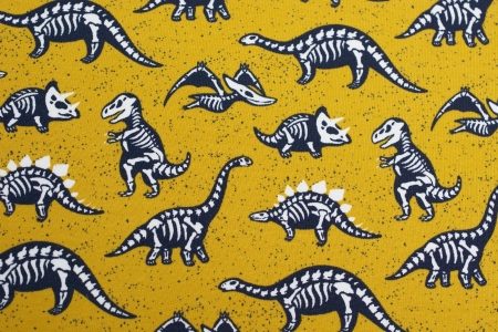 DRESÓWKA BONES AND DINOSAURS YELLOW