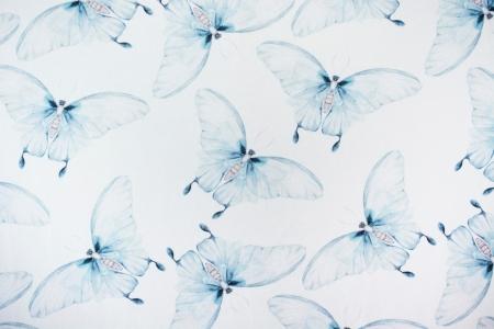 DRESÓWKA BLUE BUTTERFLY
