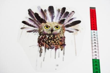NAPRASOWANKA OWL & FEATHERS