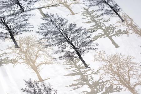 TKANINA BAWEŁNIANA DARK TREES